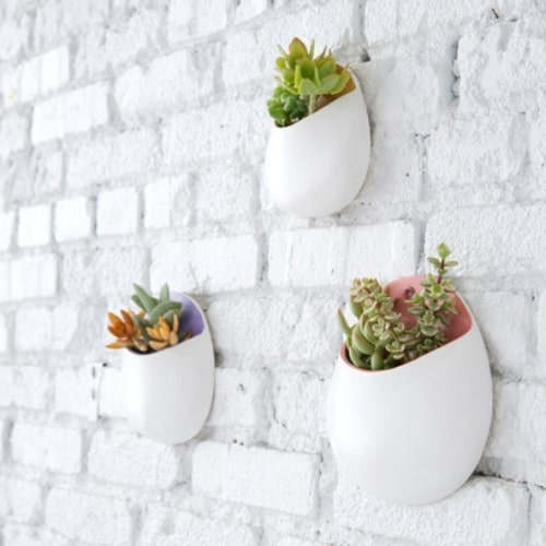 hanging pots for succlents
