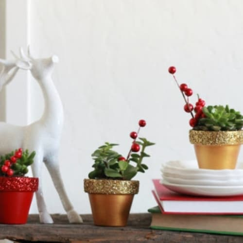 small gold and red glitter succulent pots