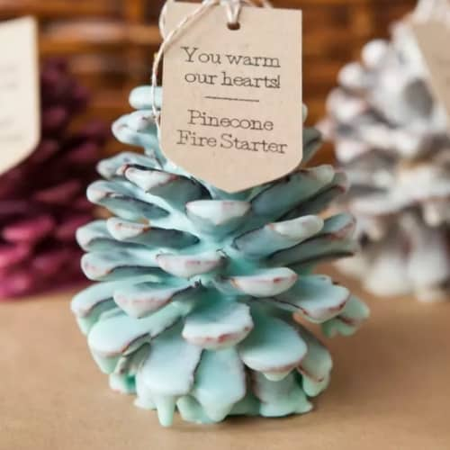 pinecone dipped in colored wax