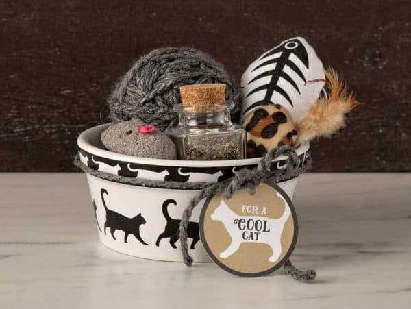 cat food bowl filled with toys